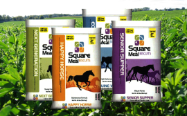 Square Meal Feeds Products
